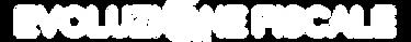 logo-web-transparent-bianco.png