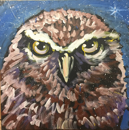 "36""x36"" Owl Acrylic on Canvas"