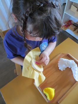 The Montessori Option - St. Albert