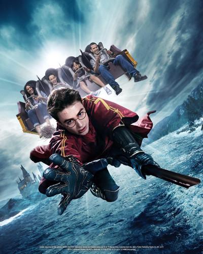 Harry Potter Forbidden Journey