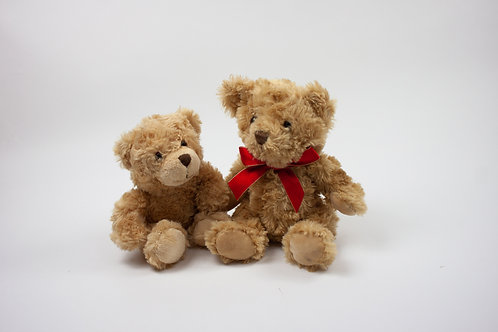 Big Ted & Little Ted