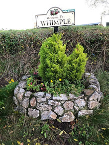 welcome to whimple - 1 (1).jpg
