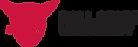 BSU-logo-horiz-4color.png