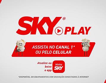 sky-rede-credenciada-pre-pago-em-sao-pau