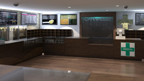 South Lake Tahoe Dispensary Project Application