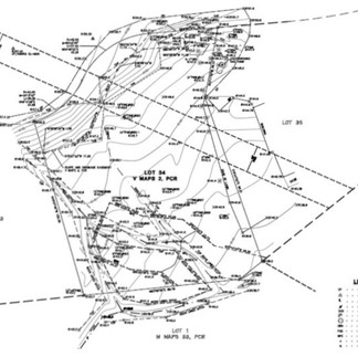 Land Surveying: Topography Plans