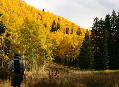 FALL & WINTER HIKING: List of what to bring, including my favorites