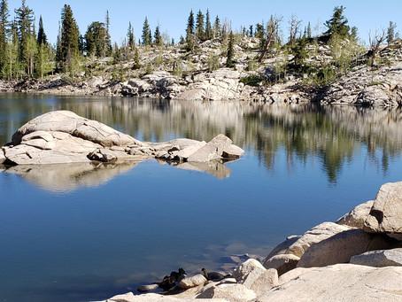 2020 Summer Hiking Season