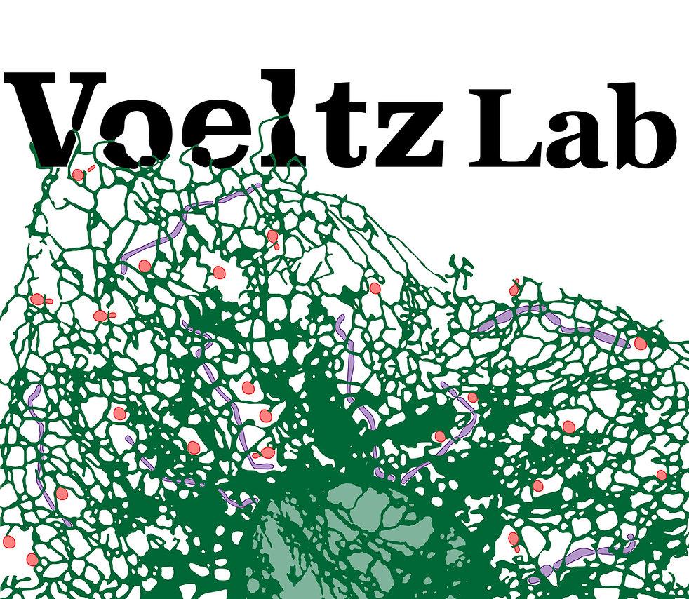 Voeltz lab
