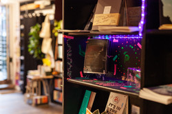 Typewronger books, Edinburgh