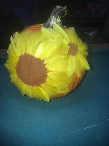 Sunflower.webp