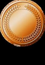Bronze.jpg.png