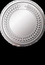 Silver.jpg.png