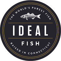 ideal-fish-logo.jpg