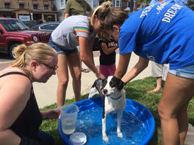 Youth Dog Wash August 2019