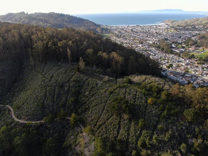 San Pedro Mountain, Pacifica