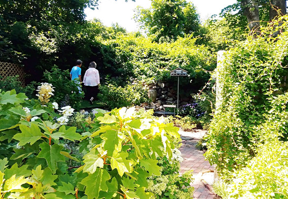 Gail Johnsons beautiful gardens (6).jpg