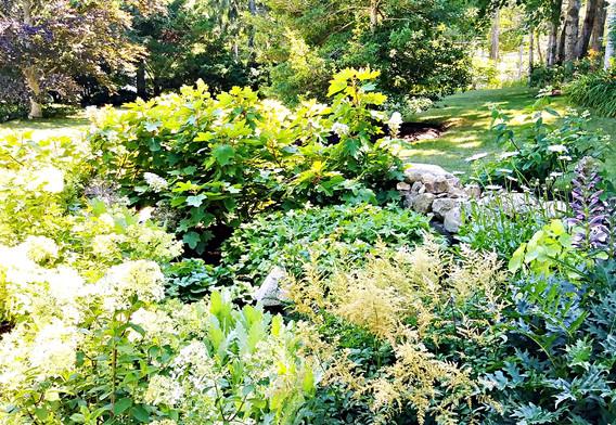 Gail Johnsons beautiful gardens (12).jpg