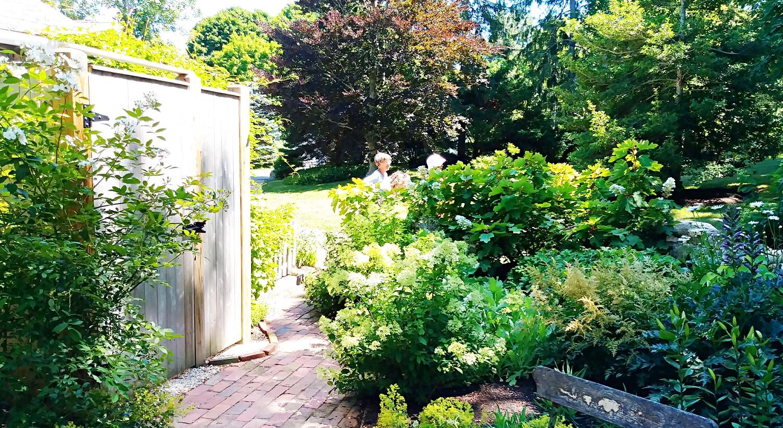 Gail Johnsons beautiful gardens (13).jpg