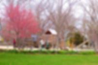Playground 2006_edited.jpg
