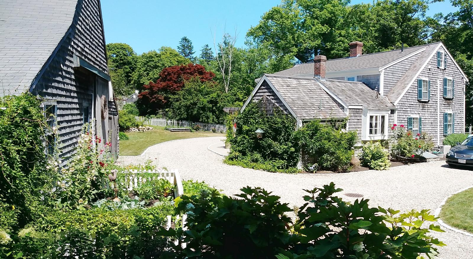 Gail Johnsons beautiful gardens (3).jpg