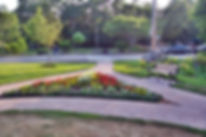 garden club plot.JPG
