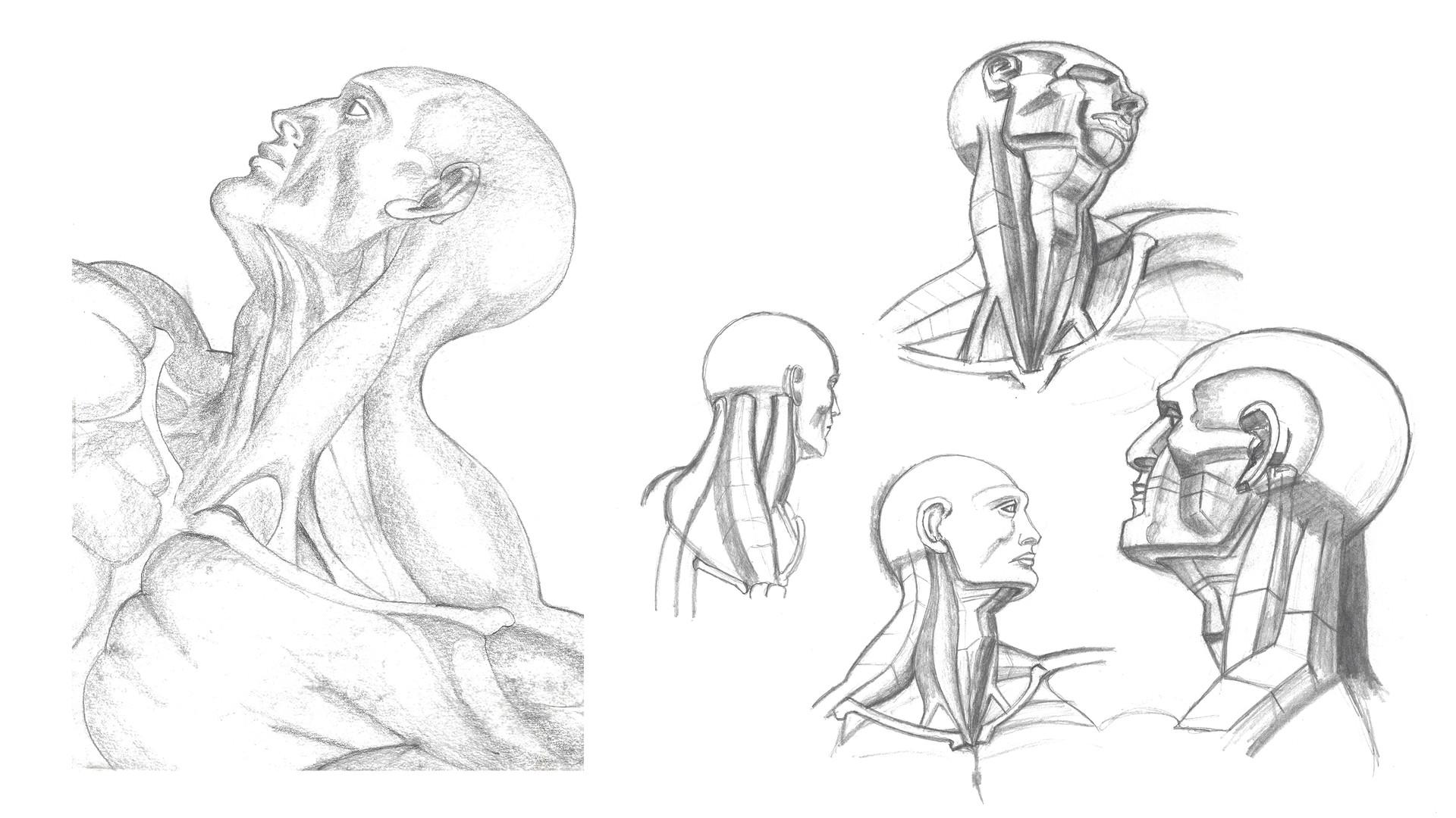 neck.jpg