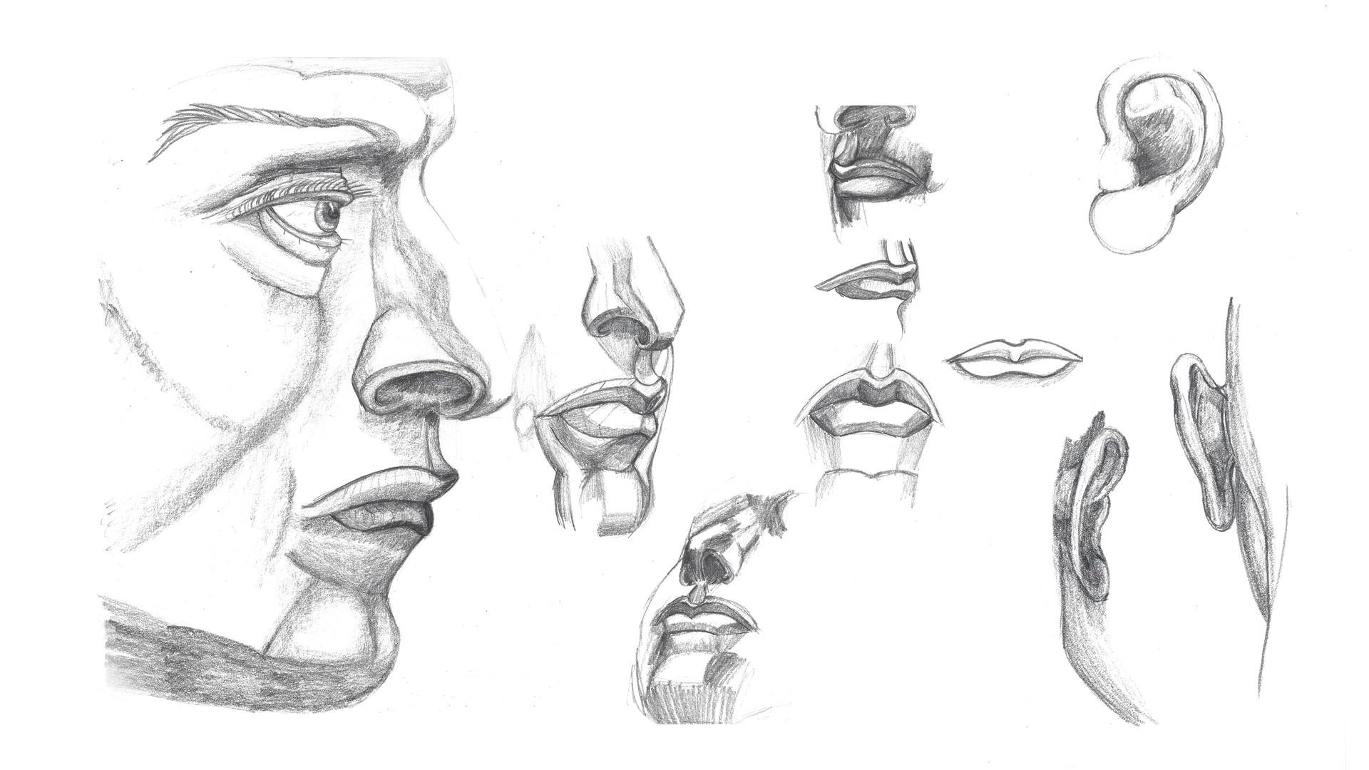 face_ears.jpg