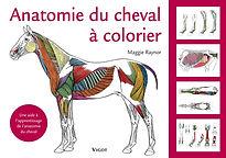 livre_anatomie_à_colorier.jpg