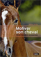 motiver son cheval.jpg