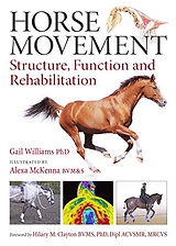 horse movement.jpg