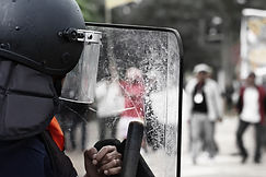Riot security