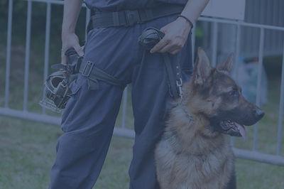 Guard dog security London