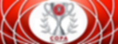 Copa Skills Challenge 1200X450.jpg