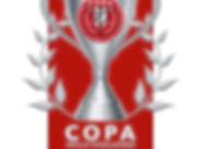 Copa Skills Challenge.jpeg