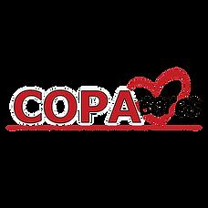 Copa Cares 2020 square copy.png