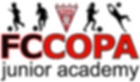 Copa Jr Academy LARGE.jpg