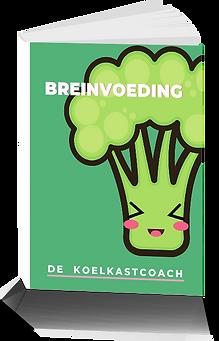 Mockup ebook breinvoeding.png