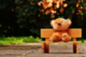 brown-teddy-bear-on-brown-wooden-bench-o
