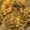 Thumbnail: Calendula