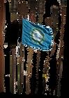 Dakota Flag.png