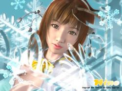 031125_Hino_Snow.jpg