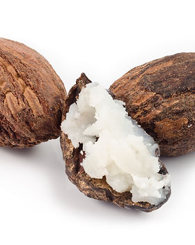 three shea nuts, one is filled with butt