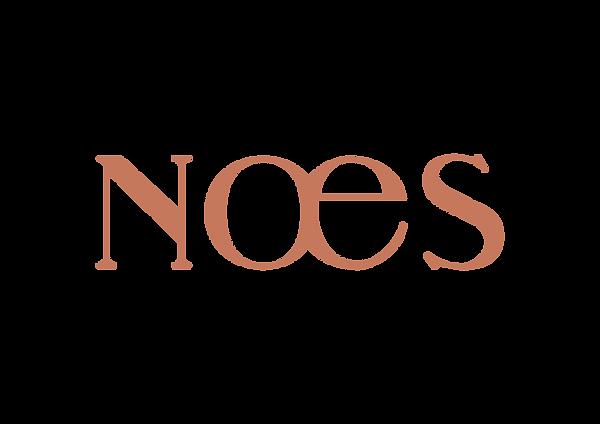 190611-NOES-LOGOS-01-Orange.png