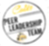 Peer Leadership Team 2.PNG