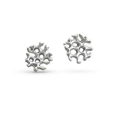 Matrix Coral Stud Earrings