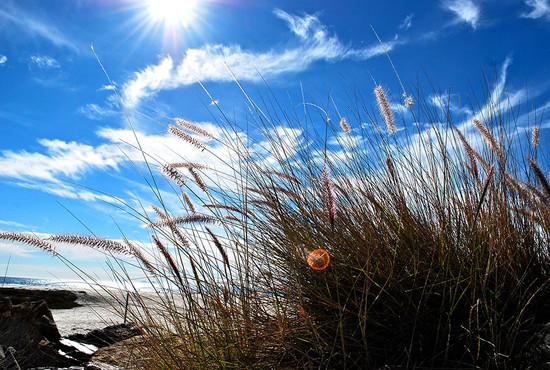 s_beach.jpg