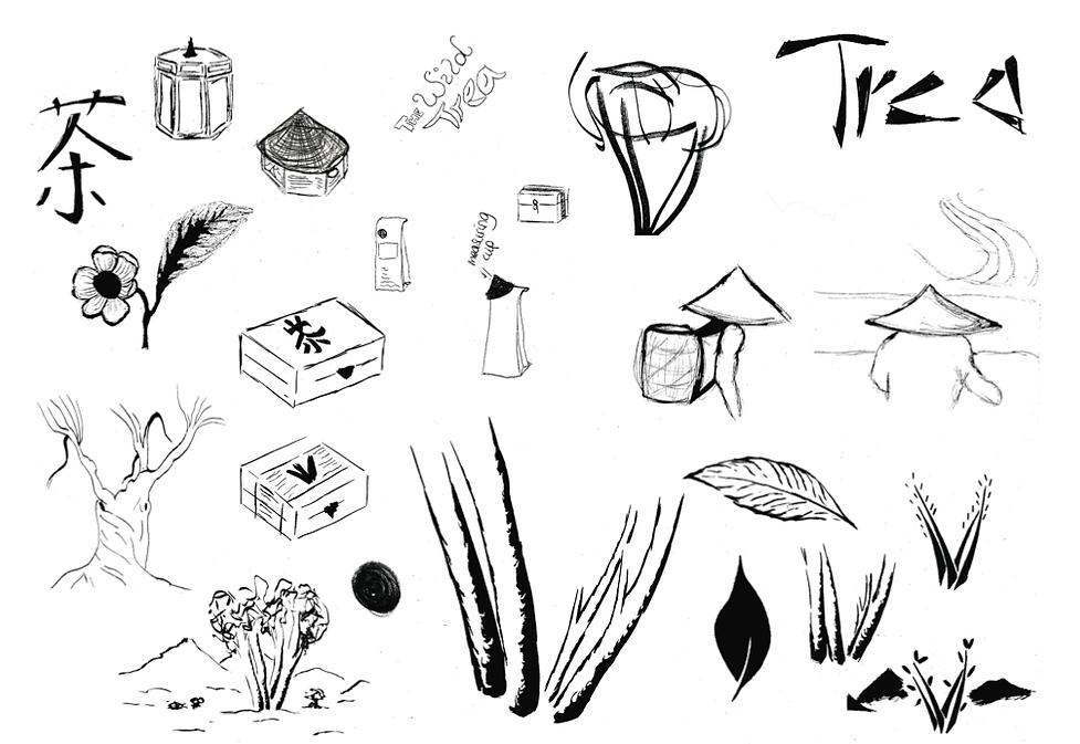 Wild tea company logo design