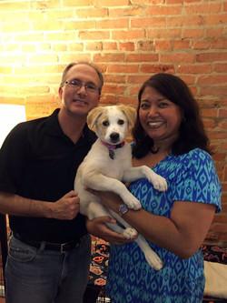 honey puppy adoption - loretta