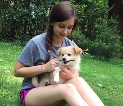 Bear - Milo adoption